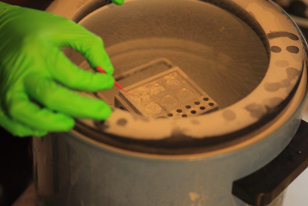 Invertir en biotecnología al servicio del sector